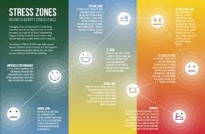 priority stress zones